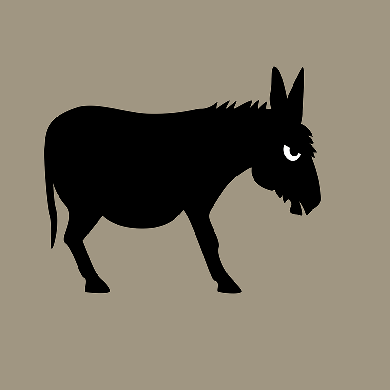 Angry Animals: Bad ass donkey