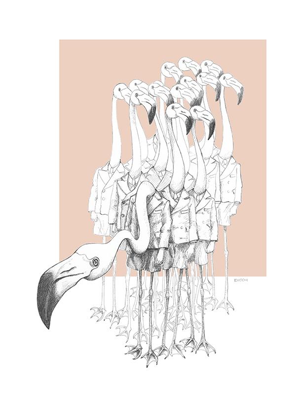 Weird & Wonderful: Flamingo Boys