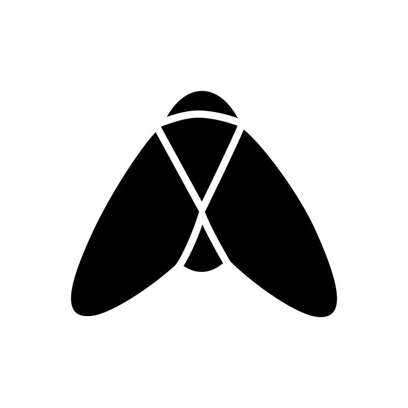 Bugs - Fly