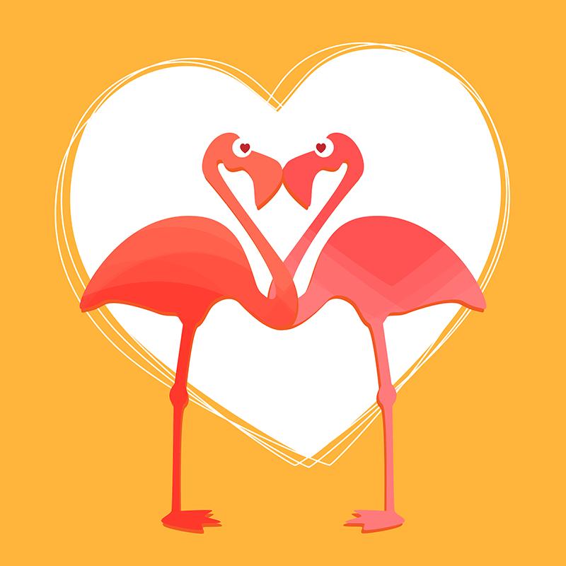 Lovebirds Flamingos