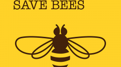 For the bees: Be Safe – Save Bees