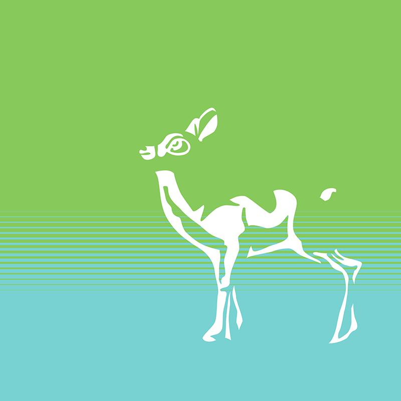 Spring is in the air, deer 2