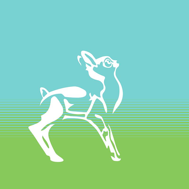 Spring is in the air, deer