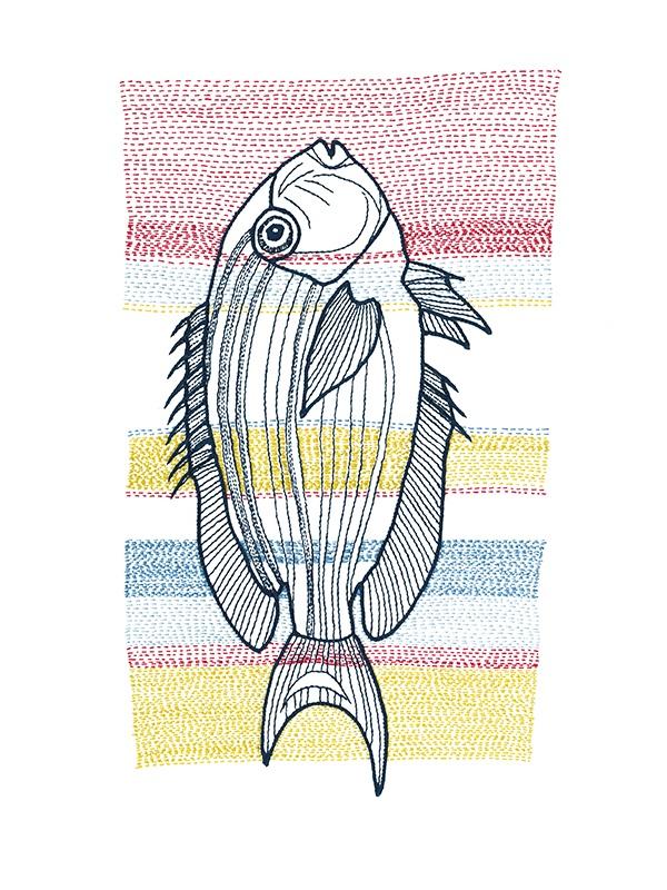 Stitches: Fish