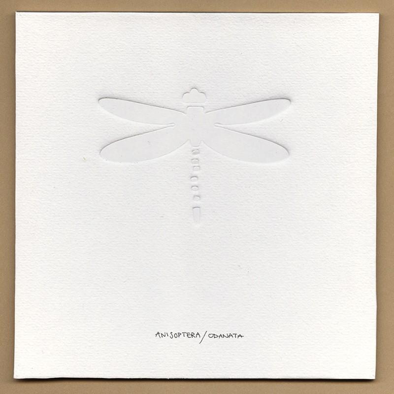 witte blinddruk Libel ©VrijFormaat