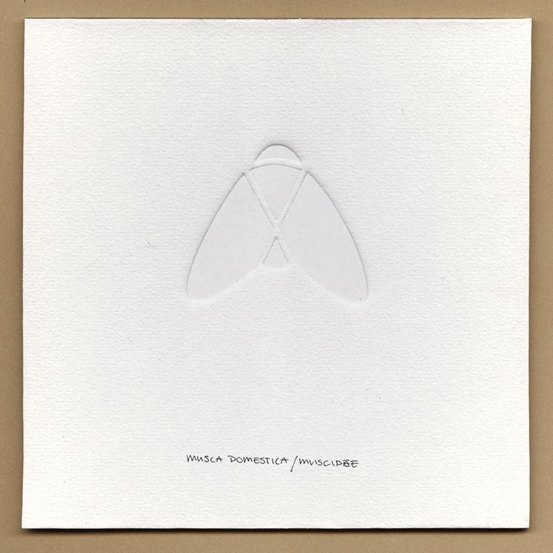 witte blinddruk Vlieg ©VrijFormaat